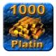 1000 Guild Wars Platin (GW Platinum)