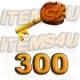 300 Guild Wars Zaishen Schlüssel (Z-Keys)